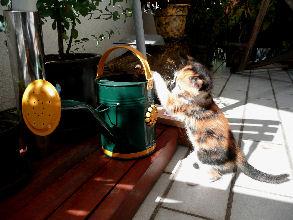17-09-2007-lubie-02.jpg