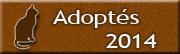 CHATS Adoptés en 2014