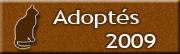 CHATS Adoptés en 2009