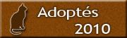 CHATS Adoptés en 2010