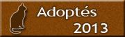 CHATS Adoptés en 2013