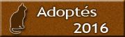 CHATS Adoptés en 2016