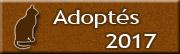 CHATS Adoptés en 2017