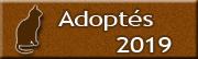 CHATS adoptés en 2019