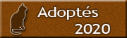 CHATS adoptés en 2020