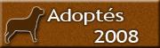 Chiens adoptés en 2008