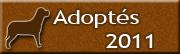 Chiens adoptés en 2011