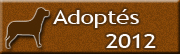 Chiens adoptés en 2012