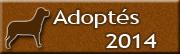 Chiens adoptés en 2014