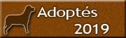 CHIENS adoptés en 2019