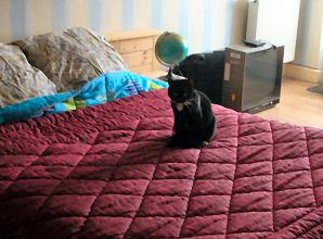 santana-20-03-08-2.jpg